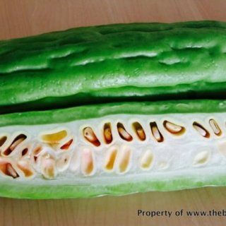 How_to_choose_and_prepare_bitter_gourd