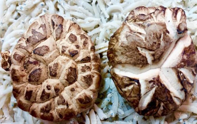 How to Choose Chinese Dried Mushrooms